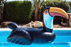 pool inflatable floaters